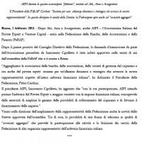 130201-comunicato-assemblea copy