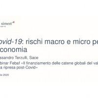 Slide Terzulli Febaf-thumbnail